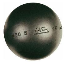 MS Steel